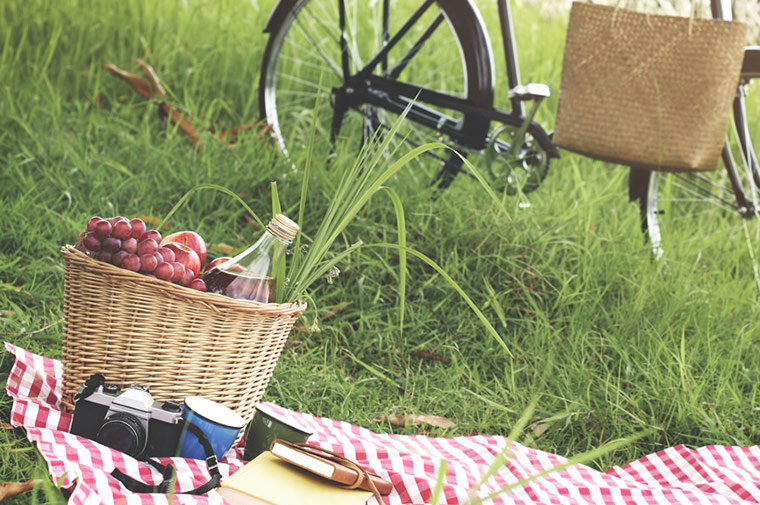 picnic and bike